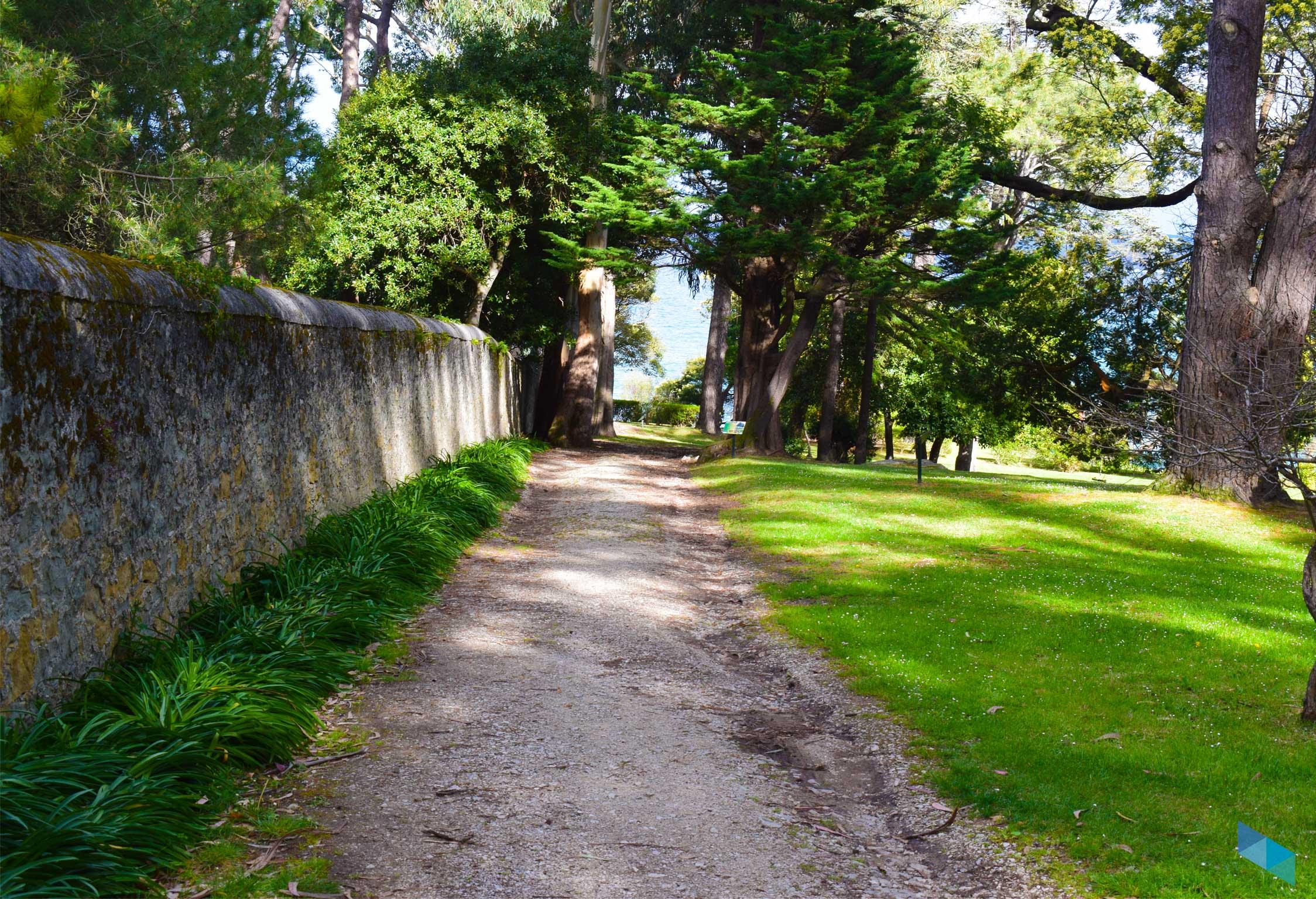 Parque de Mataleñas camino