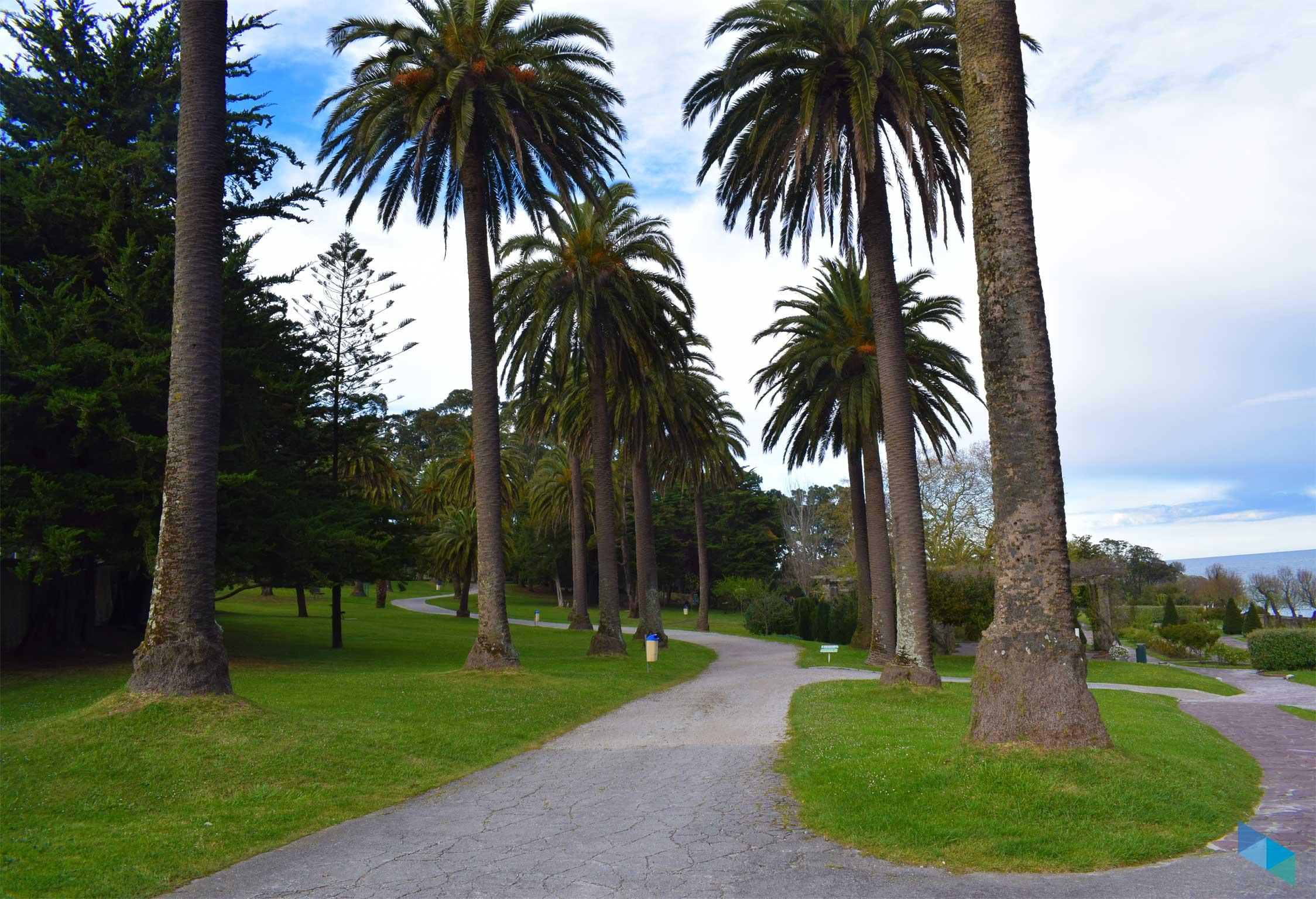 Parque de Mataleñas entrada