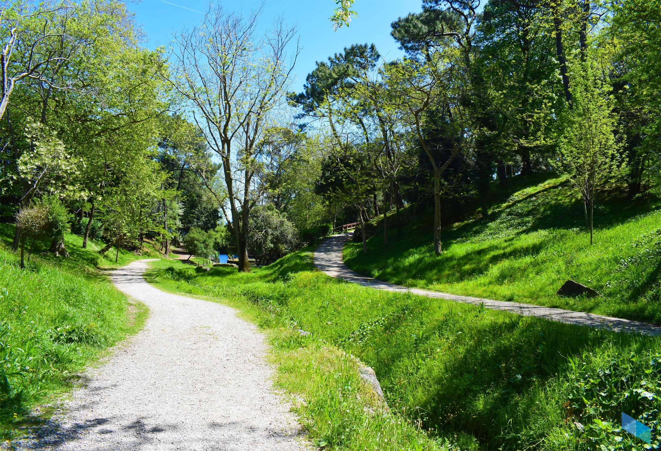 Parque de Mataleñas interior