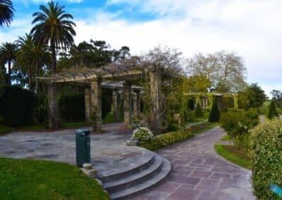 Parque de Mataleñas plantas