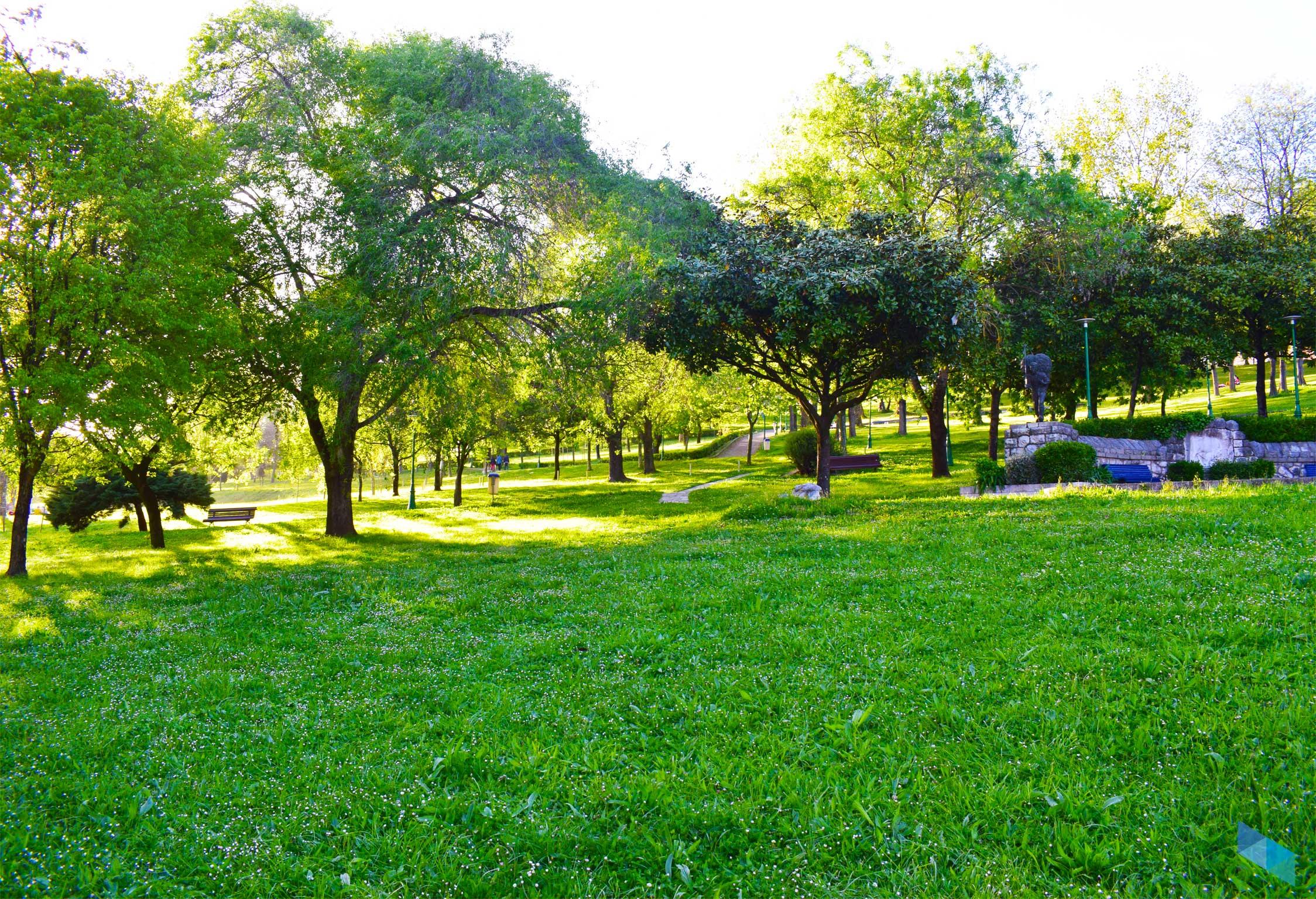 Parque Doctor Morales Zonas Verdes