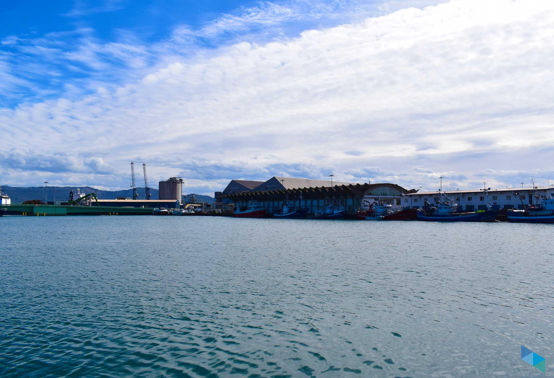 Lonja de pescado Santander
