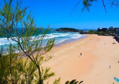 Primera Playa del Sardinero desde los jardines de piquio
